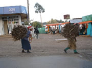 Centro Women Fuelwood Carriers